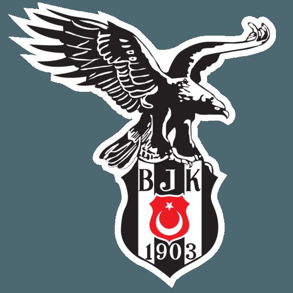 Besiktas rządzi w Stambule i w całej Turcji