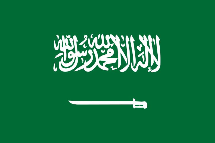 Arabia Saudyjska – Egipt: Saudyjczycy jak Niemcy